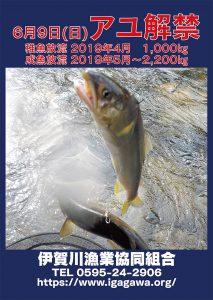 2019年度 アユ釣り情報