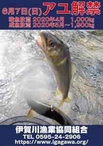 2020年度 アユ釣り情報